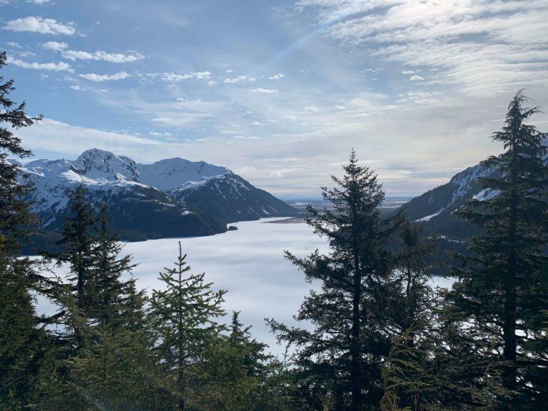 Alaskan scenery, including mountains, pine trees, and a lake