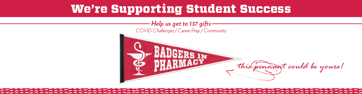 Badgers Supporting Student Success banner